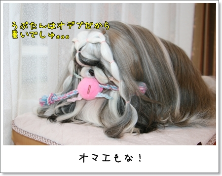 2008_1217_073735AA.jpg