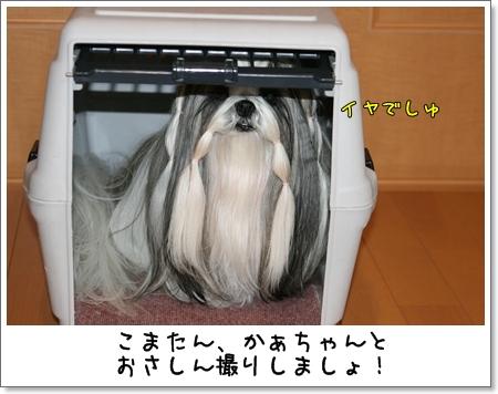 2008_1218_073549AA.jpg