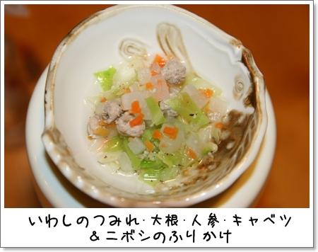 2008_1218_220923AA.jpg