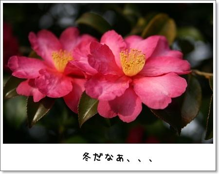 2008_1221_142346AA.jpg