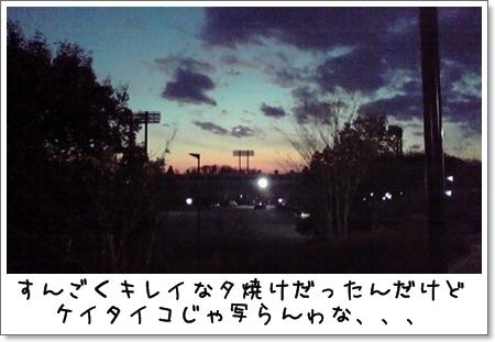 2008_1223_165500AA.jpg