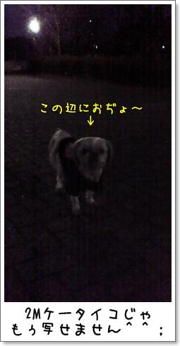 2008_1223_165500AB.jpg