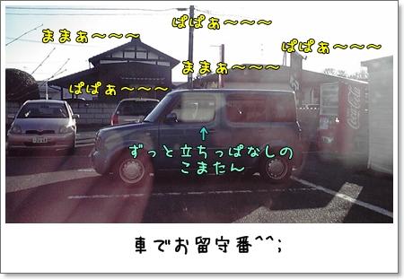 2008_1231_142200AA.jpg