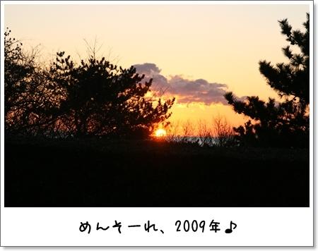 2009_0101_064959AA.jpg