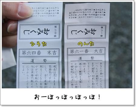 2009_0101_075828AA.jpg