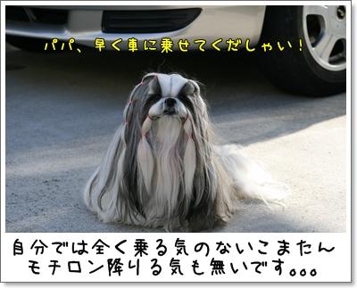 2009_0104_125905AA.jpg