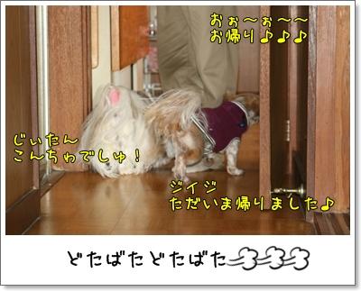 2009_0104_131349AA.jpg