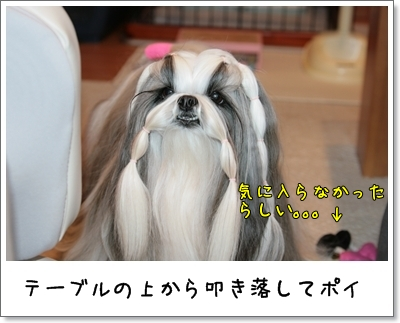 2009_0106_073159AA.jpg