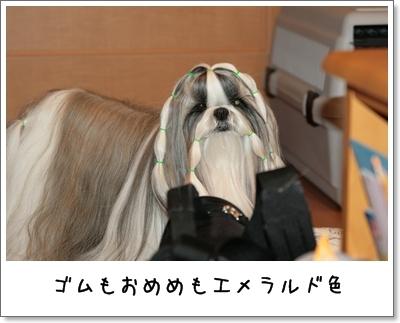 2009_0107_072946AA.jpg