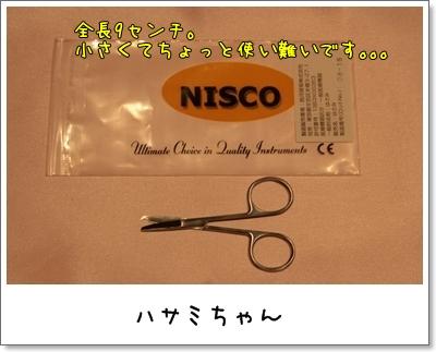 2009_0109_060627AA.jpg