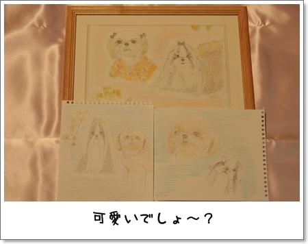 2009_0109_061423AA.jpg