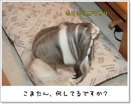 2009_0109_073343AA.jpg