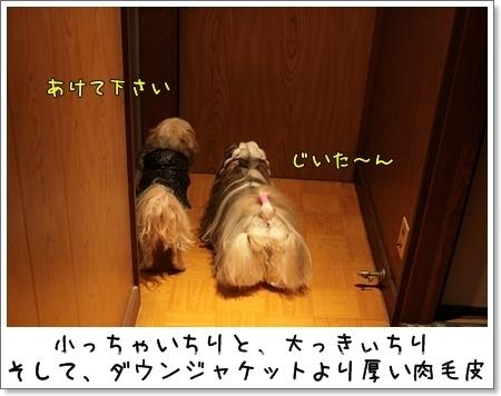 2009_0110_173751AA.jpg