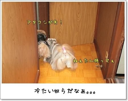 2009_0110_173755AA.jpg
