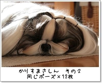 2009_0111_132039AA.jpg