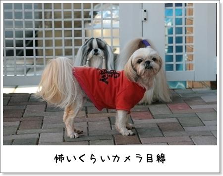 2009_0111_135119AB.jpg