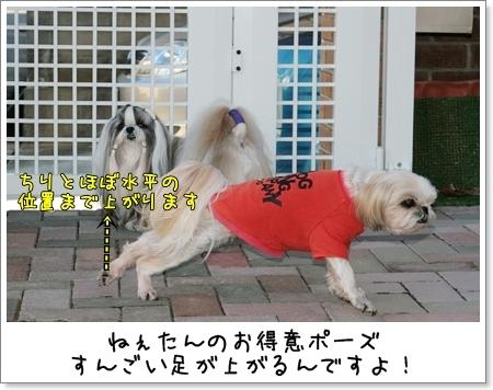 2009_0111_135128AA.jpg