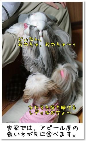 2009_0112_183259AA.jpg