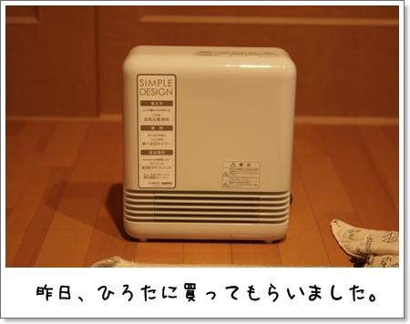 2009_0113_060311AA.jpg