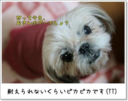 2009_0113_190816AA.jpg
