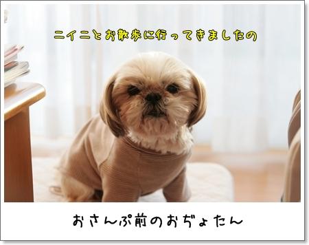 2009_0117_154510AA.jpg