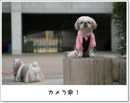 2009_0118_141251AA.jpg
