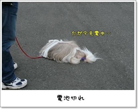 2009_0118_141749AA.jpg