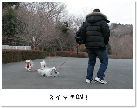 2009_0118_141833AA.jpg
