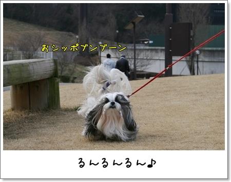 2009_0118_143154AA.jpg