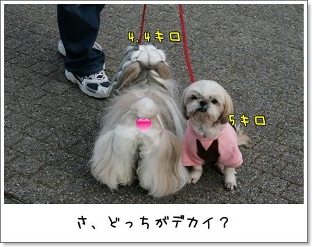 2009_0118_150214AA.jpg