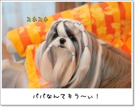 2009_0119_073516AA.jpg
