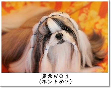 2009_0119_073601AA.jpg