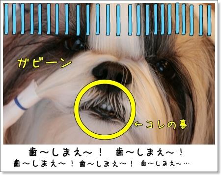 2009_0119_073720AB.jpg