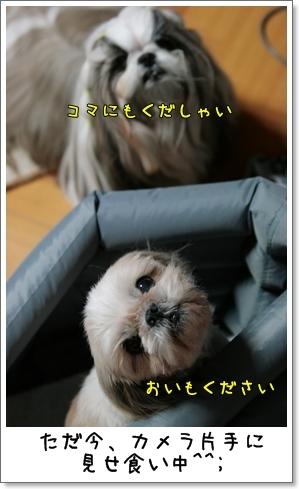 2009_0120_192452AB.jpg
