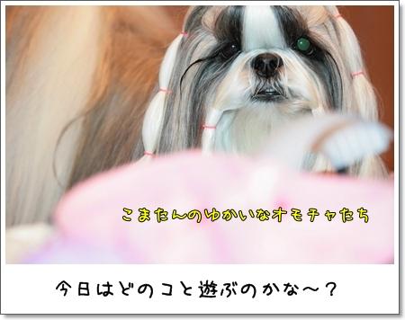 2009_0123_073510AA.jpg