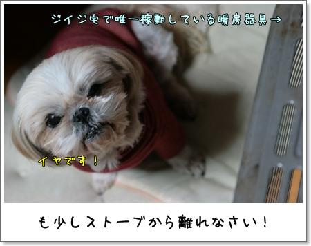2009_0125_171132AA.jpg