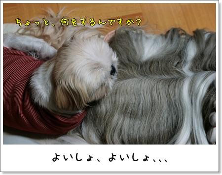 2009_0125_174320AA.jpg