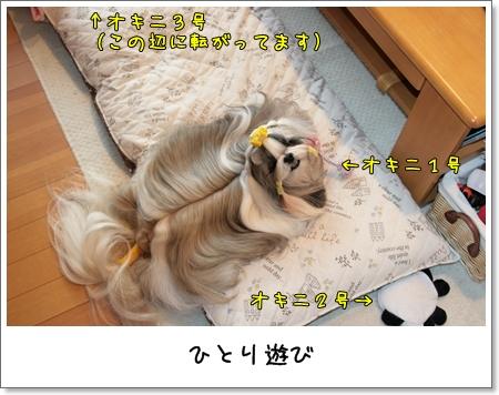 2009_0126_145921AA.jpg