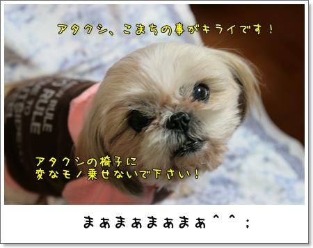 2009_0126_190211AA.jpg