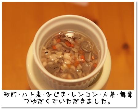 2009_0126_202556AA.jpg