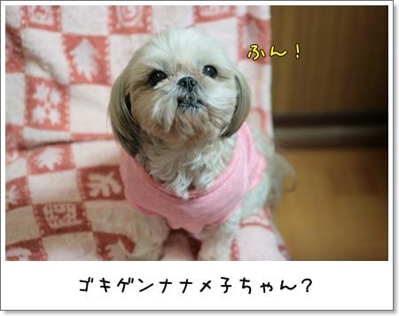 2009_0128_193406AA.jpg
