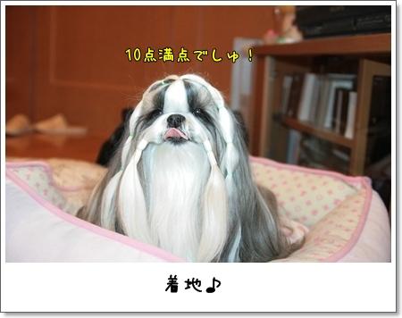 2009_0130_073716AA.jpg