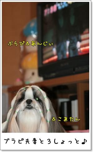 2009_0130_073822AA.jpg