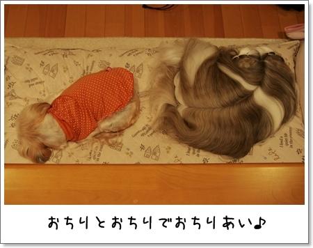 2009_0131_171833AA.jpg