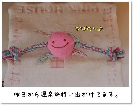 2009_0201_072454AA.jpg