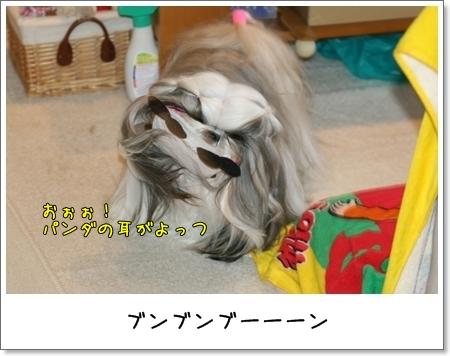 2009_0201_080121AA.jpg
