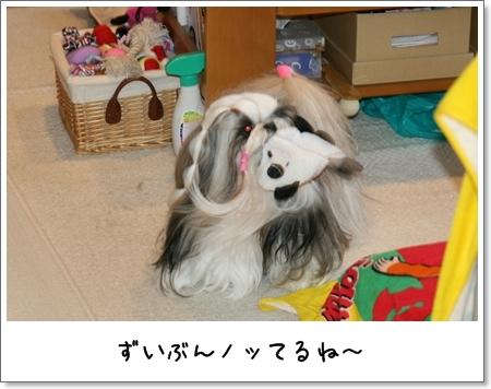 2009_0201_080122AA.jpg