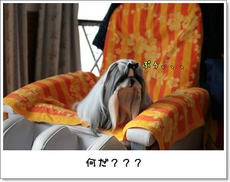 2009_0201_114836AA.jpg