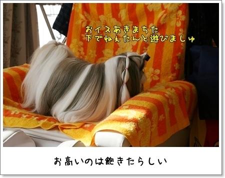 2009_0201_114853AA.jpg