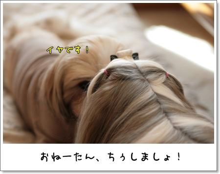 2009_0201_115101AA.jpg